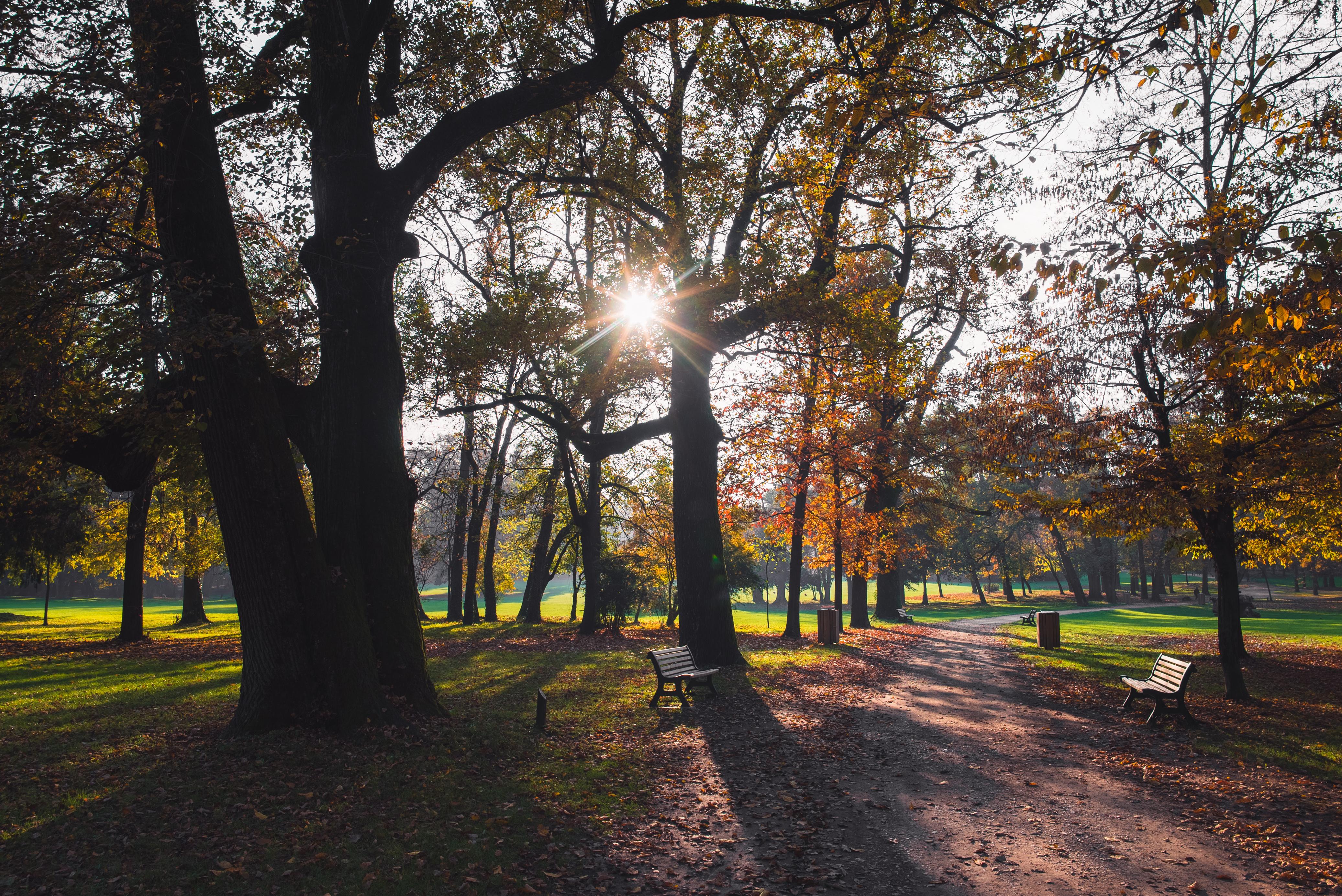 TRA WEB E NATURA: passeggiata al Parco di Monza